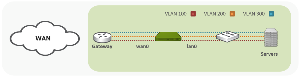 vlan trunk support